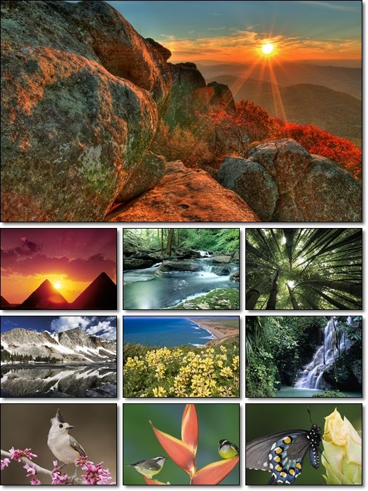 Nature Wallpaper Pack x Wallpaper Fetch