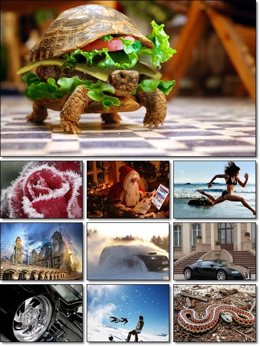 Beautiful Photos Pack