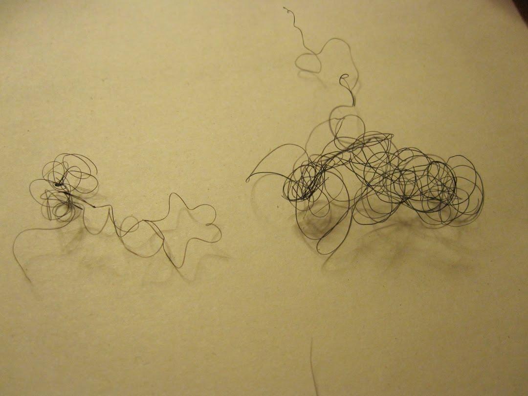 Coarse Pubic Hair
