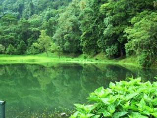 Parque Nacional Guaramacal. Venezuela. turismo en montaña,