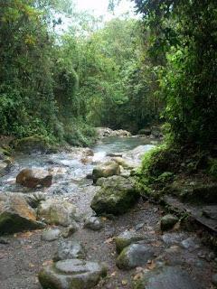 río en Parque Nacional Guaramacal. Venezuela. muy frío, turismo.