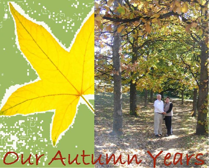 Our Autumn Years