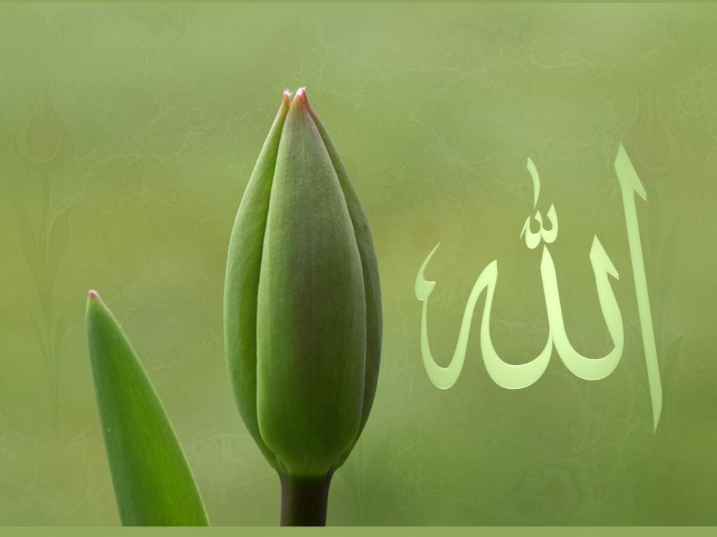 http://2.bp.blogspot.com/_CJJ6KsJ_rl8/S7fAXI-IS8I/AAAAAAAAAOs/jzb56uv_OD0/s1600/Allah_C_C_.png