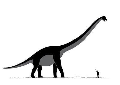Comparativa tamaño Sauroposeidon - hombre