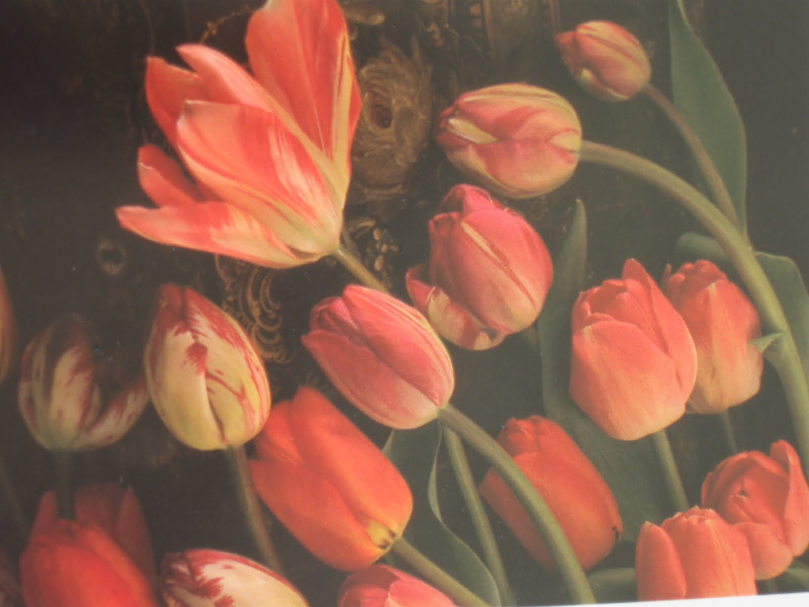 Blomsterbo: boktips från blomsterbo; 1