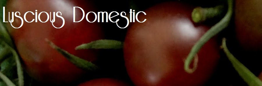 Luscious Domestic