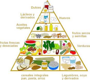 La veriedad de comida Vegetariana