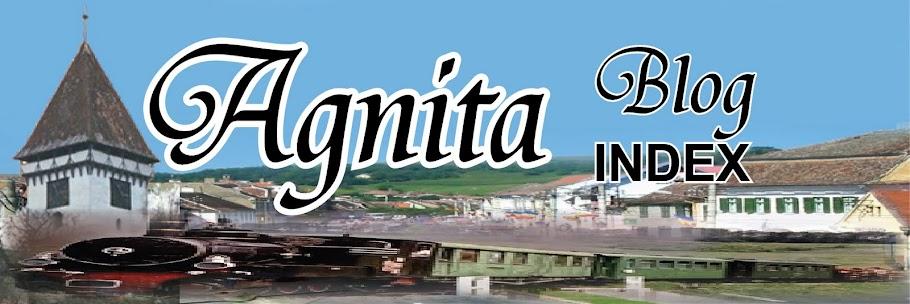 Agnita Blog INDEX