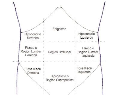 Semiología Quirúrgica RD: Examen Físico: Abdomen