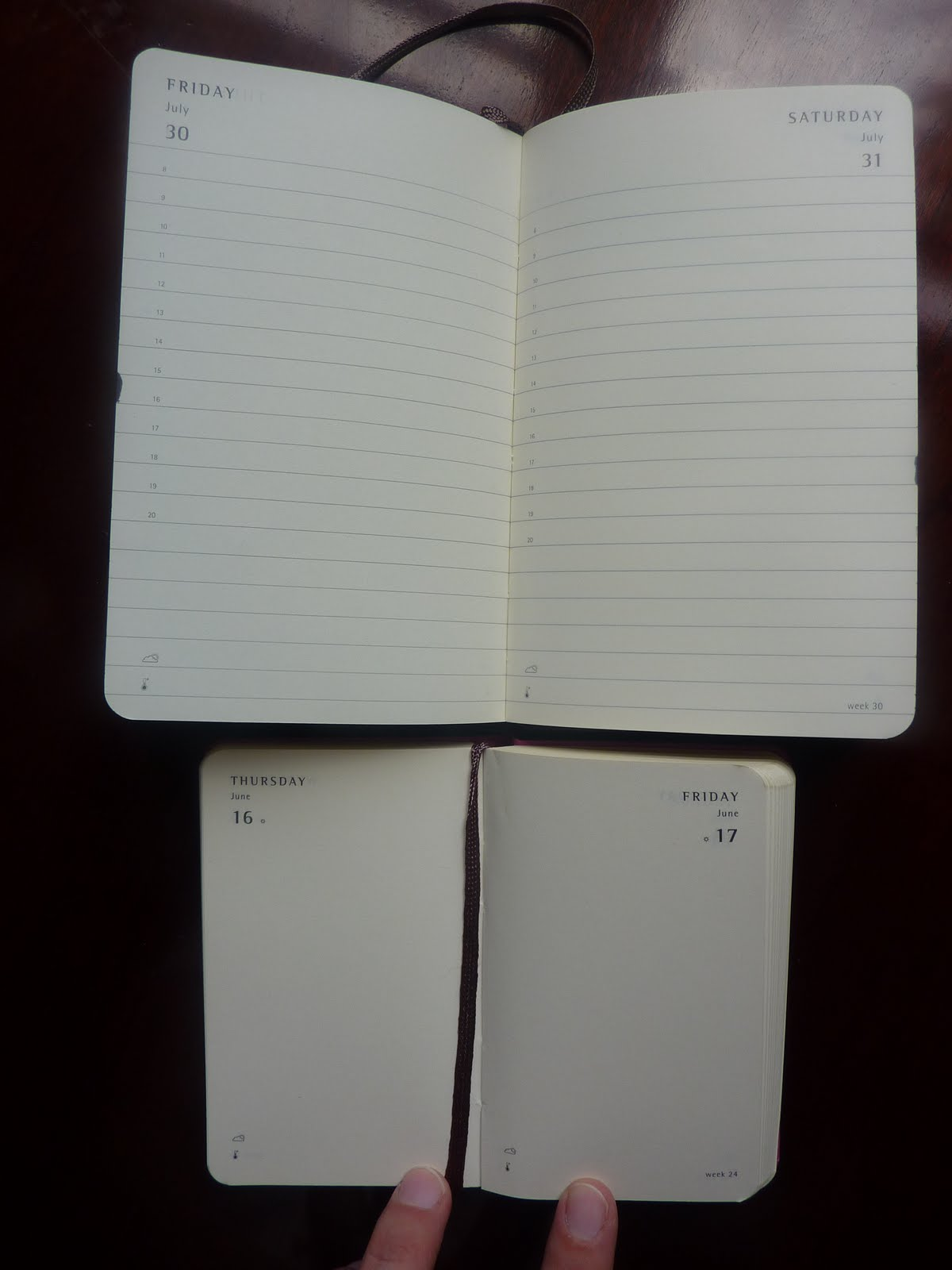 Plannerisms moleskine 2011 extra small daily and weekly for Small planner