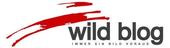 wild blog
