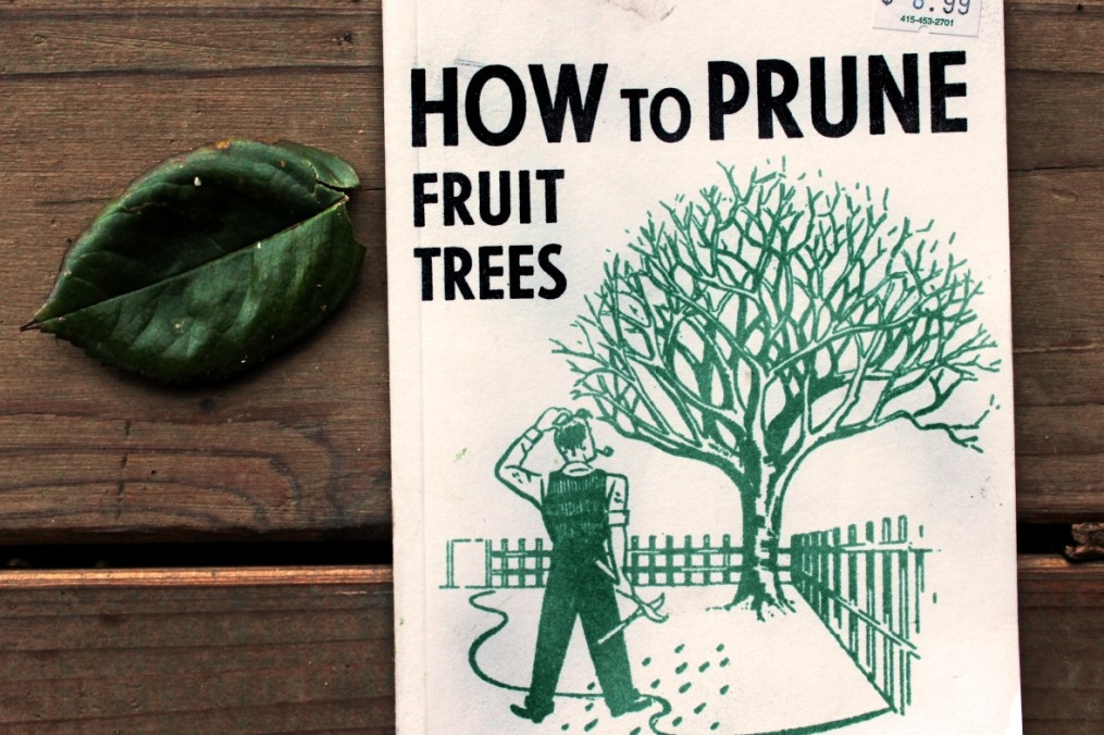 This is a wonderful little book: How to Prune Fruit Trees, by R. Sanford