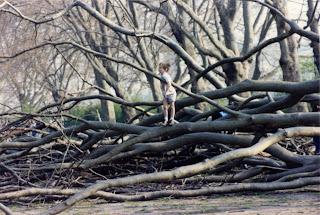 Bishops Park Fulham Post Gt Storm 19900331