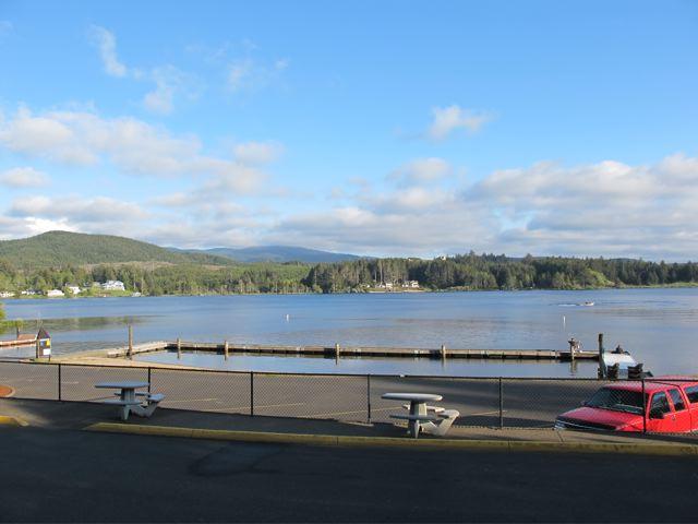 Schooling salmon permanent location at regatta park for Fishing in lincoln city oregon