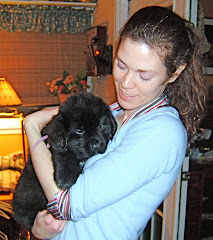 Katie: A Newfie Girl Growing Up