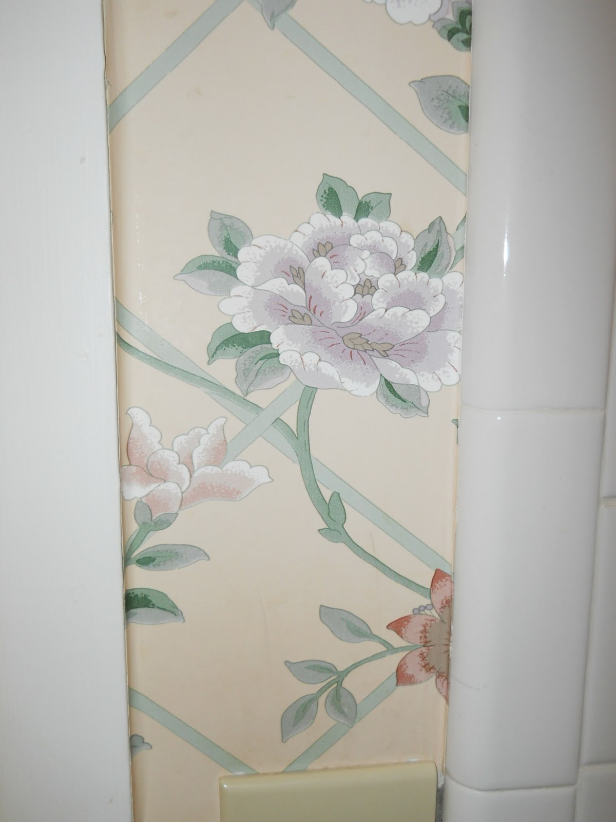 a paint personunless I can find mega-super-easy-removable wallpaper.