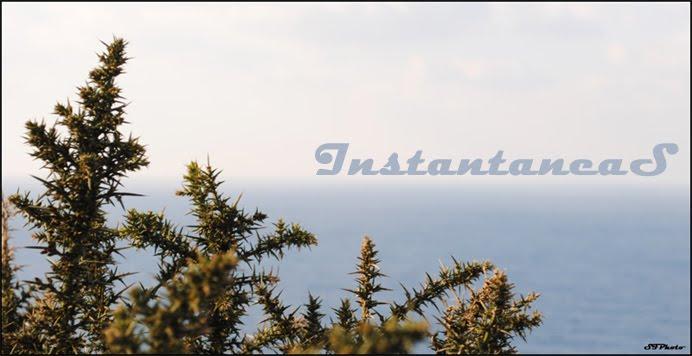 InstantaneaS