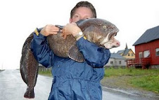 Ugliest Fish In the World