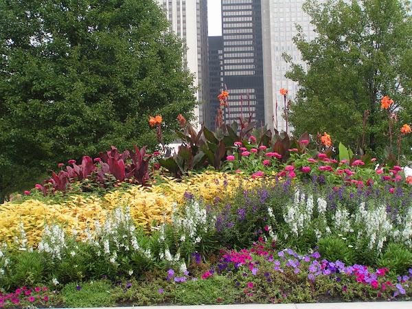 Imagenes de parques y jardines cuidar de tus plantas es for Ideas para parques y jardines