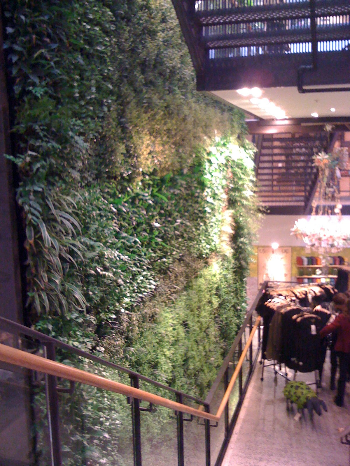 DIY Greenwalls November 2009