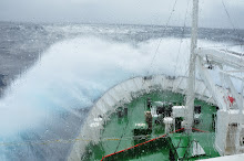 Drake Passage - Force 9 wind, 7m swell