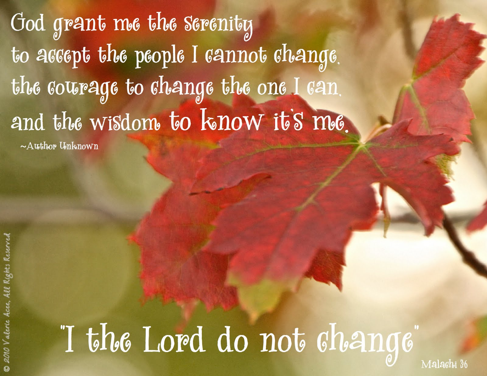 I Was Shocked When I Came Across This Quote This Morning. I Started Out  With The Leaf   And How Trees Go Thru The Beautiful Color Change In The Fall  And ...