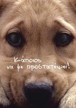 Δεν μπορείς να σώσεις κάθε ζώο στον κόσμο όμως, για αυτό το ένα που σώζεις, ΕΙΝΑΙ ο κόσμος.
