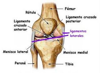Aikido seiza que pasa cuando hacemos en seiza taringa - Dolor en la parte interior de la rodilla ...