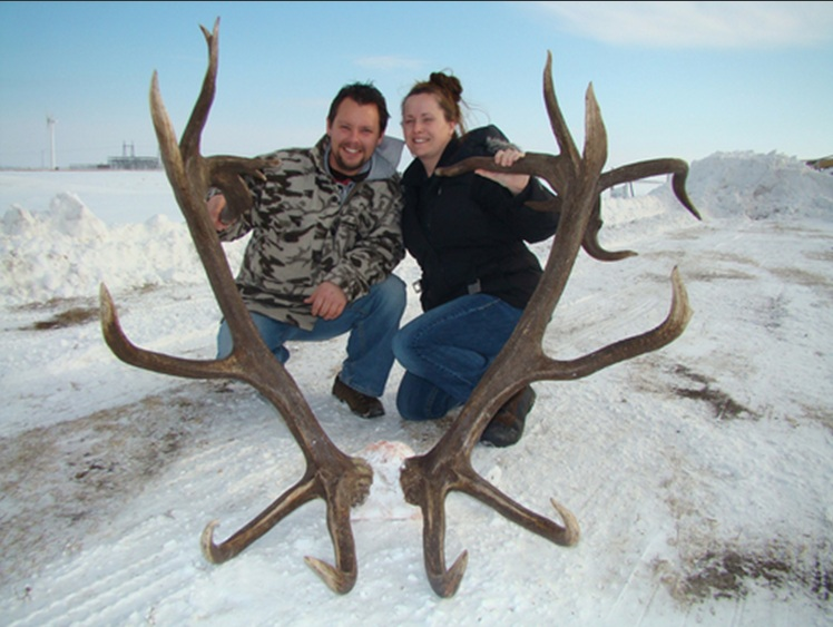 World Record Elk