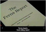 Ferns Report highlights 100 cases: