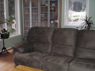 Light Recliner Sofa Tropical Room