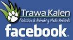 Trawa Kalen en Facebook