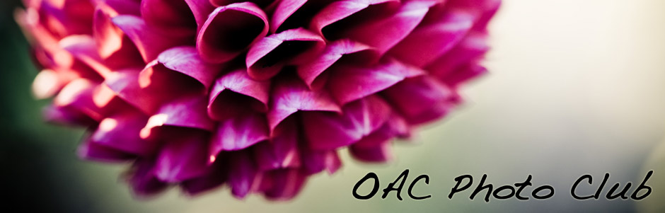 OAC Photo Club