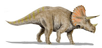 biceratops is related to triceratops