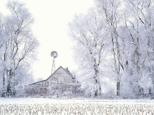 Frosted Farmland, LaSalle County, Illinois Images, Picture, Photos, Wallpapers