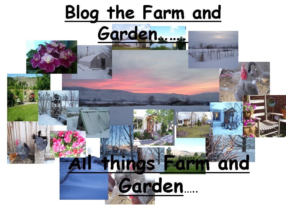Blog on the farm.....and garden....