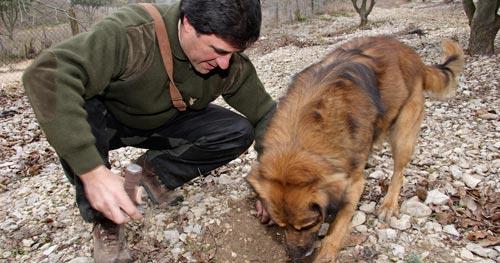 Serafín Nieva con su perro