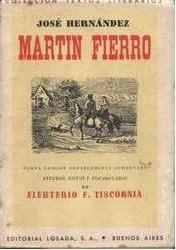 Martín Fierro [Resumen]