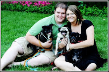 Mr & Miss Pug and Furkids