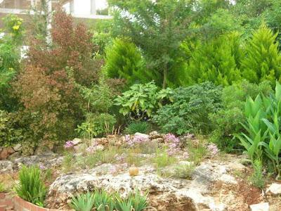 El jard n de sa possessi arriate de las mimosas - Arriate jardin ...