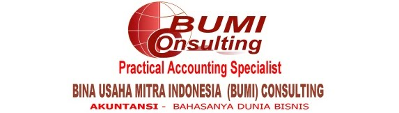BUMI Consulting