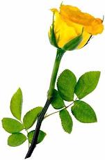 Esta flor es para ti: