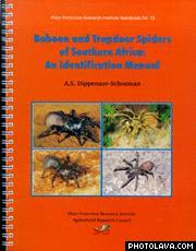biology of spiders foelix pdf