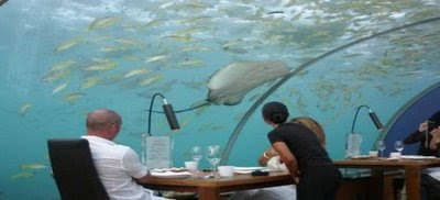 World Amazing Under Sea Restaurant