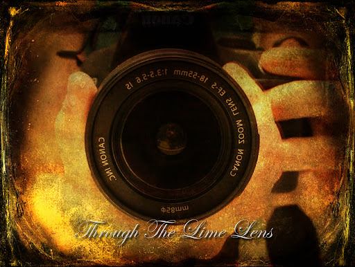 Through The Lime Lens