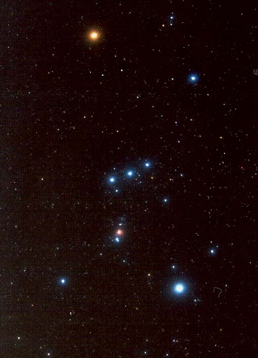 My hero, Orion, the Hunter! I love this time of year because Orion's belt
