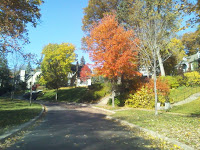This one is on Minnehaha Parkway in Minneapolis