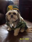 Sgt. Charlie