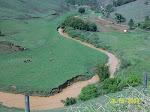 Rio casca