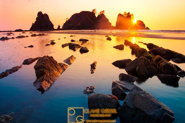 washington sea stacks, west coast, washington state national park, olympic national park wa